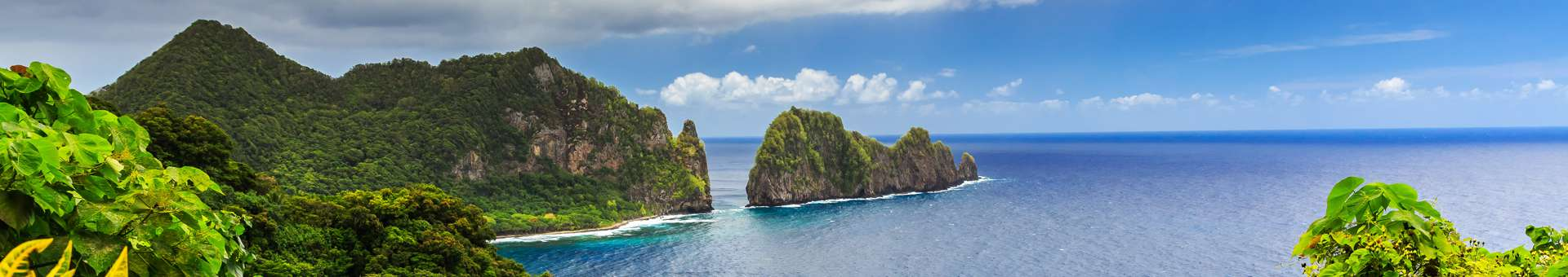 Search Whois information of domain names in American Samoa