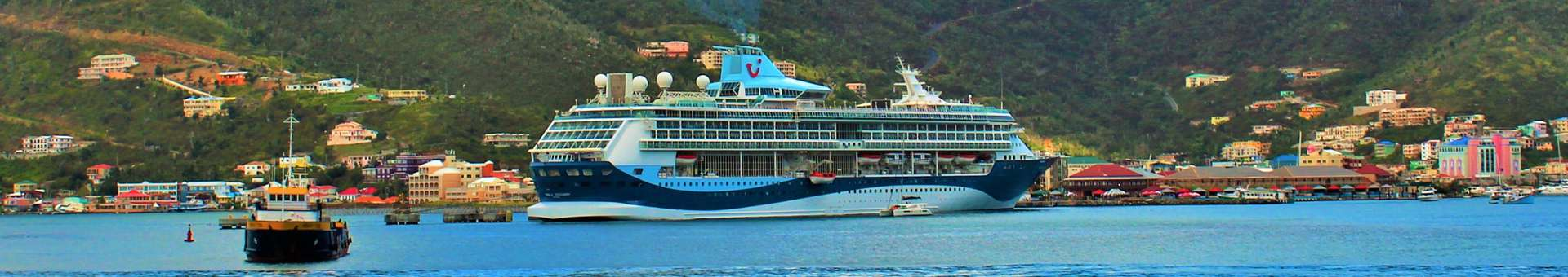 Search Whois information of domain names in British Virgin Islands