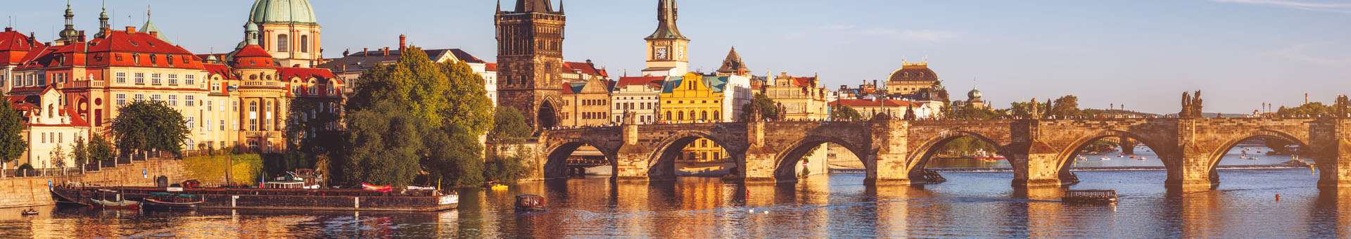 Search Whois information of domain names in Czech Republic