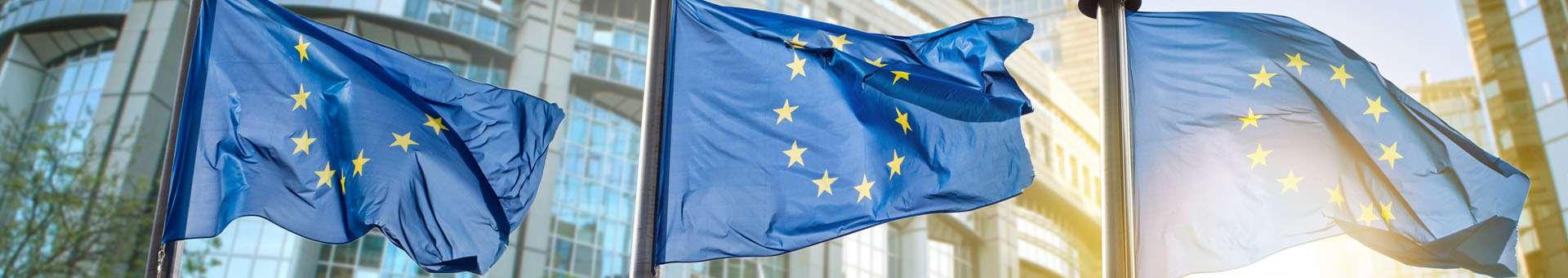 Búsqueda de información Whois de nombres de dominios en EU