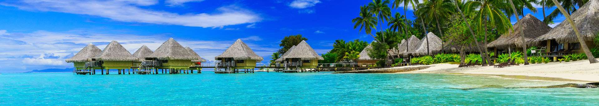 Search Whois information of domain names in French Polynesia