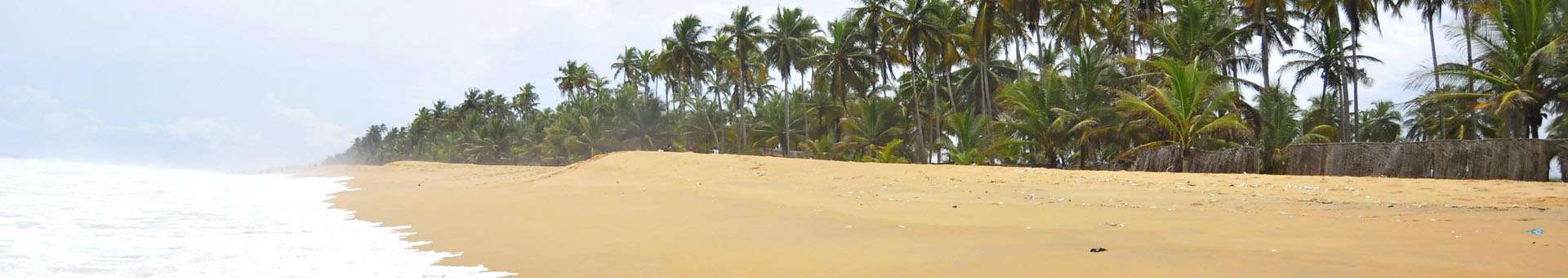 Search Whois information of domain names in Ivory Coast