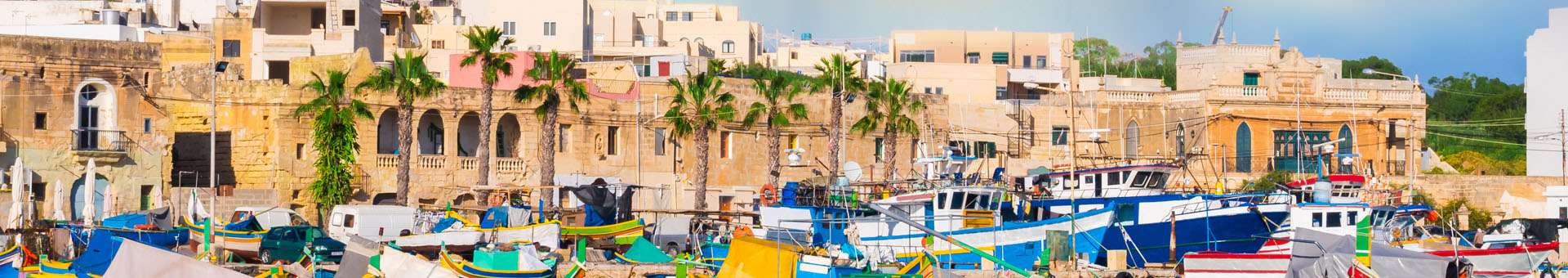 Search Whois information of domain names in Malta
