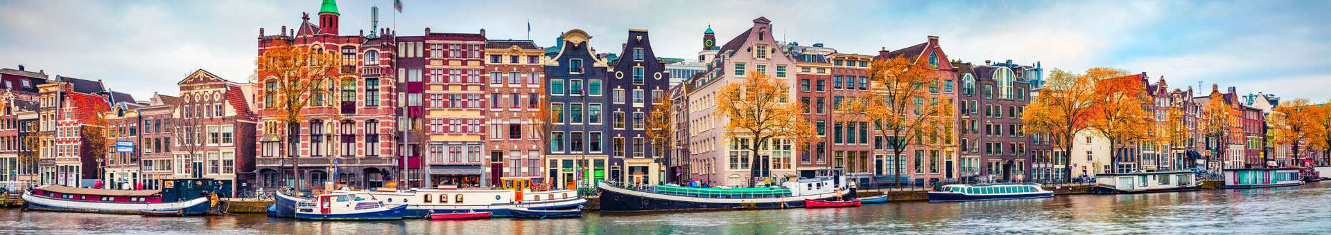 Search Whois information of domain names in Netherlands