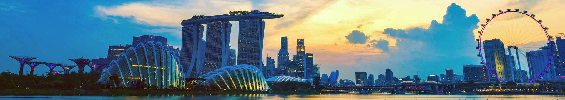 Search Whois information of domain names in Singapore
