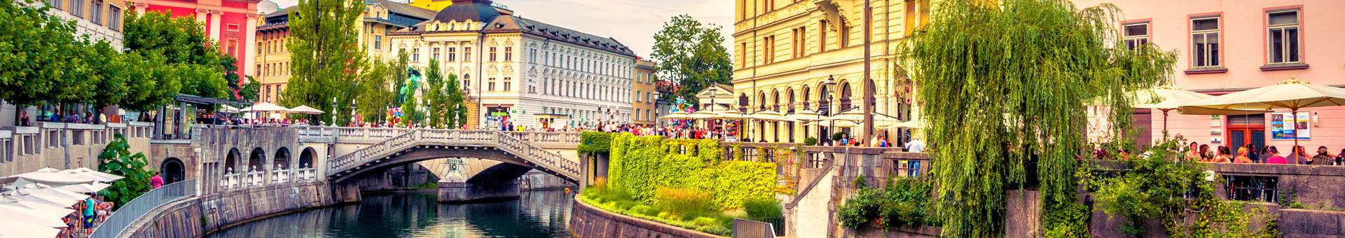 Search Whois information of domain names in Slovenia