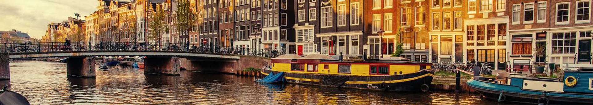 Search Whois information of domain names  .amsterdam