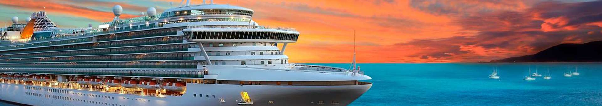 Search Whois information of domain names  .cruises