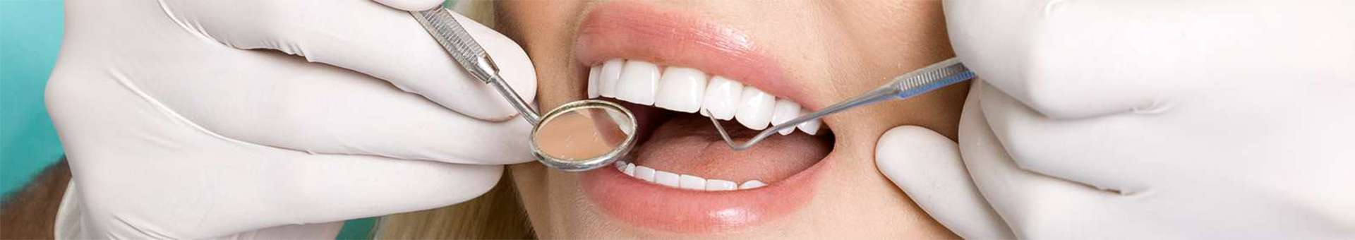 Search Whois information of domain names  .dentist