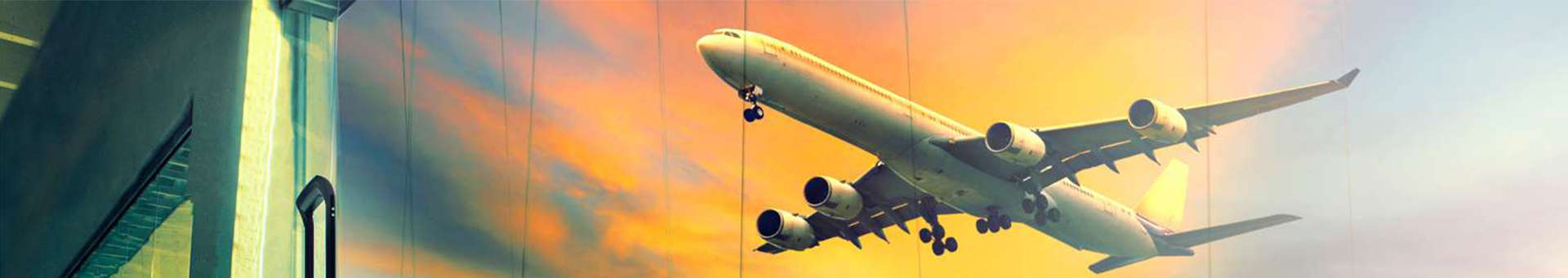 Search Whois information of domain names  .flights