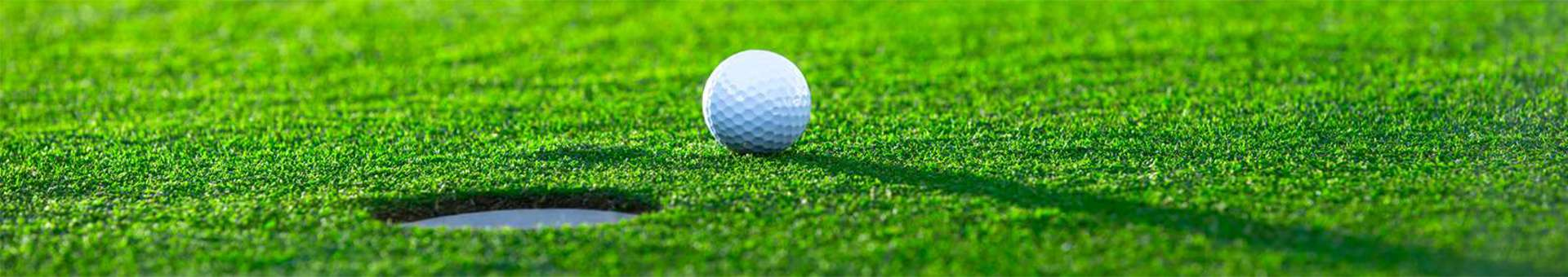 Search Whois information of domain names  .golf