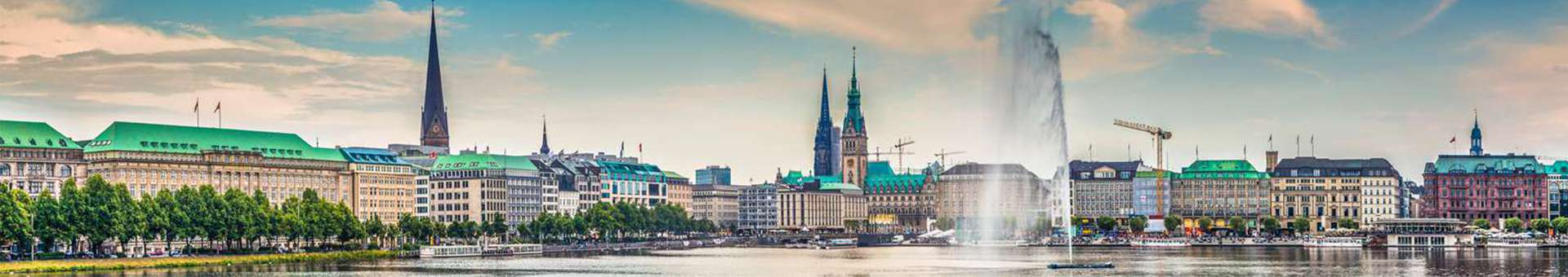 Search Whois information of domain names  .hamburg