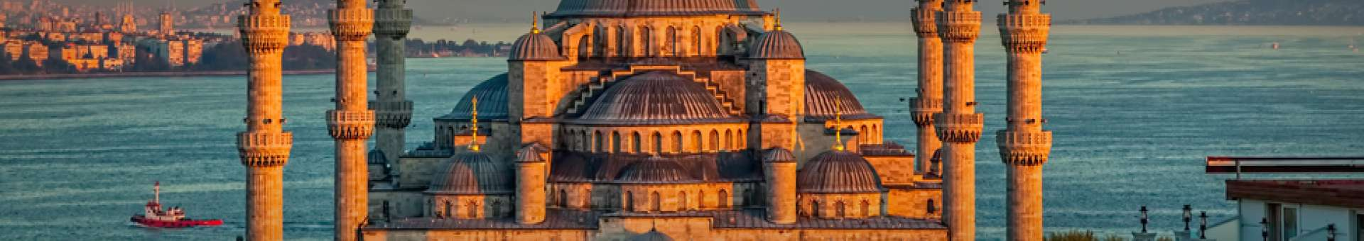 Search Whois information of domain names  .istanbul