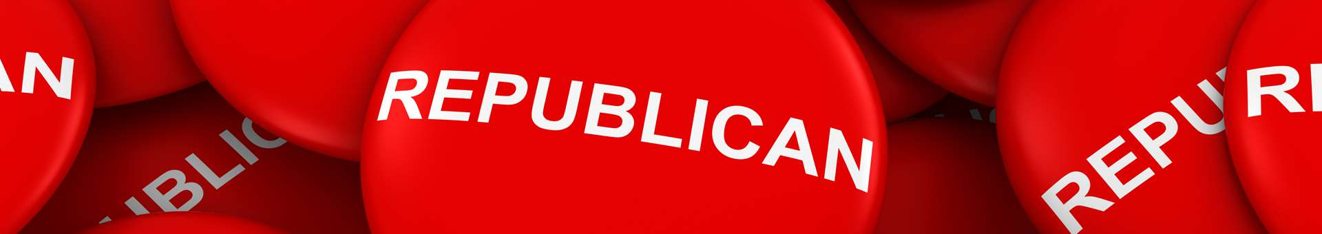 Search Whois information of domain names  .republican