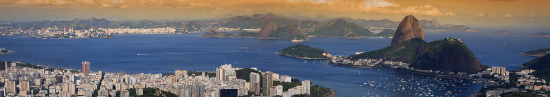 Search Whois information of domain names  .rio