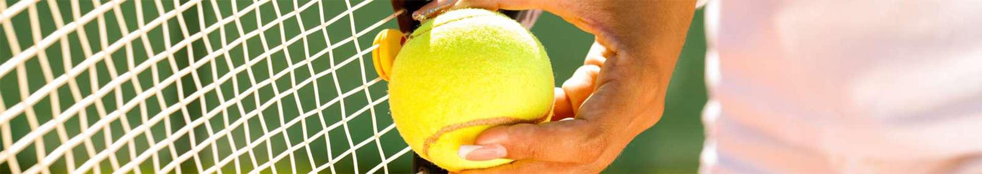 Búsqueda de información Whois de nombres de dominios  .tennis