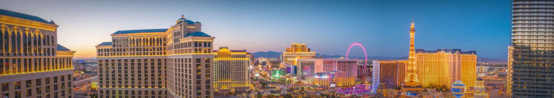 Search Whois information of domain names  .vegas